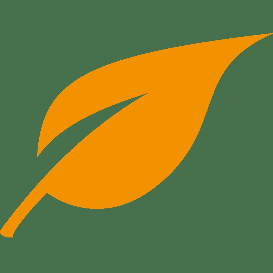 dfg-leaf-orange