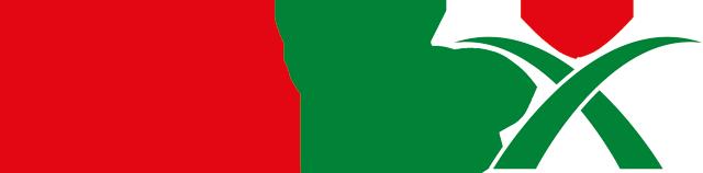 Zimflex Logo