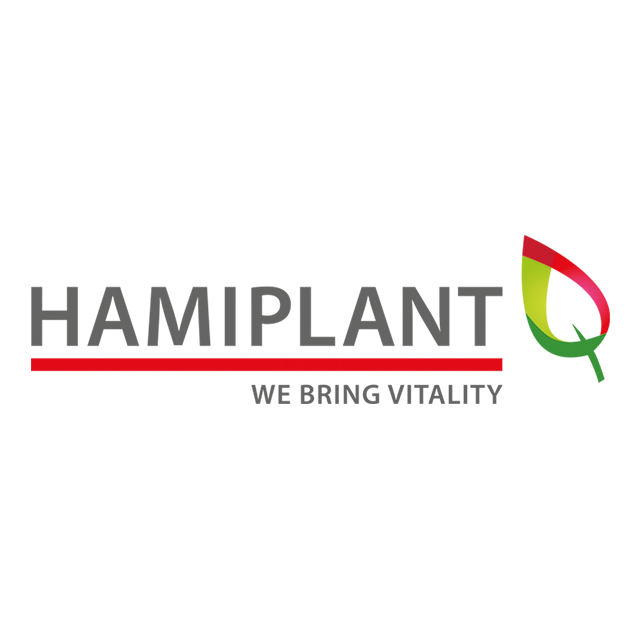 dfg-homepagina-logo-hamiplant-640x640px