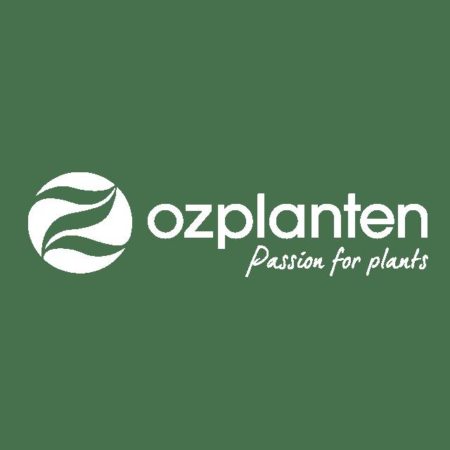 OZ-planten-wit