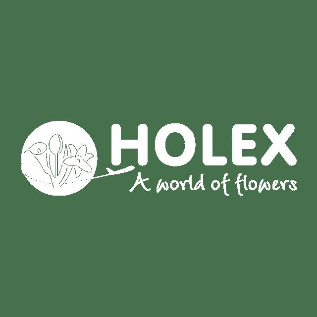 logo holex-wit